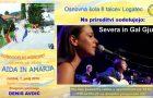 Dobrodelni koncert – prenos v živo